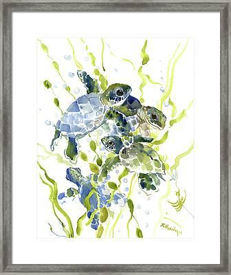 Baby Sea Turtles In The Sea Framed Print