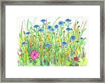 Framed Print featuring the painting Bachelor Button Meadow by Cathie Richardson
