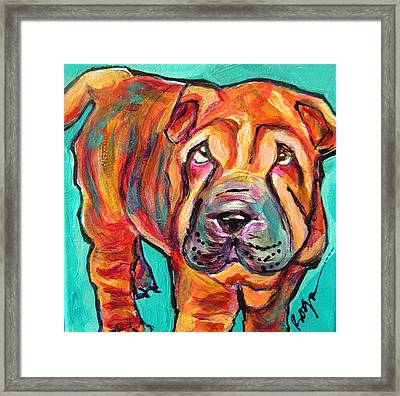 Baci Boy Framed Print