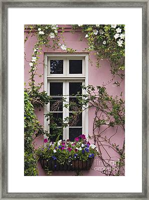 Back Alley Window Box - D001793 Framed Print