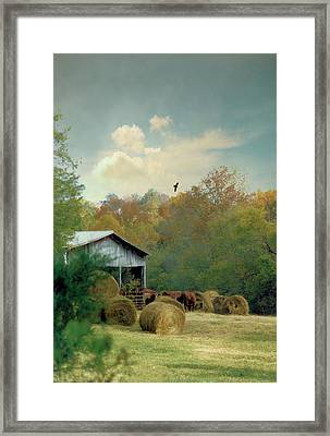 Back At The Barn Again Framed Print