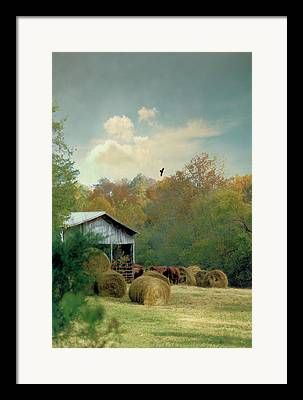 Tennessee Hay Bales Digital Art Framed Prints
