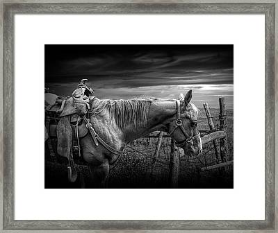 Back At The Ranch In Black And White Framed Print