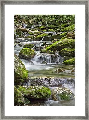 Back Country Stream Framed Print by Jon Glaser