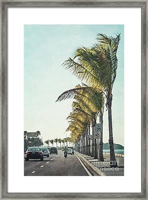 Back Down South Framed Print by Evelina Kremsdorf