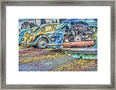 Framed Print featuring the photograph Back End Bugs by Jean OKeeffe Macro Abundance Art