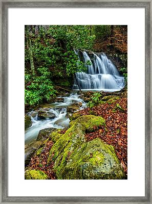 Back Fork Waterfall  Framed Print by Thomas R Fletcher