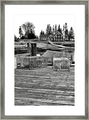 Back In Maine Framed Print by Olivier Le Queinec