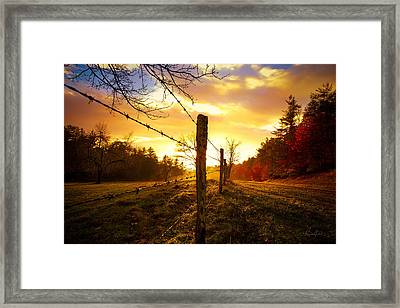 Back Light Framed Print