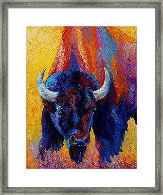 Back Off - Bison Framed Print