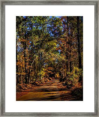 Back Road 2 Framed Print by Thomas Warner
