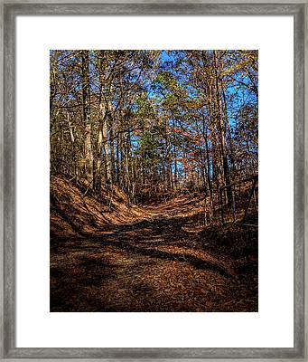 Back Road 4 Framed Print by Thomas Warner