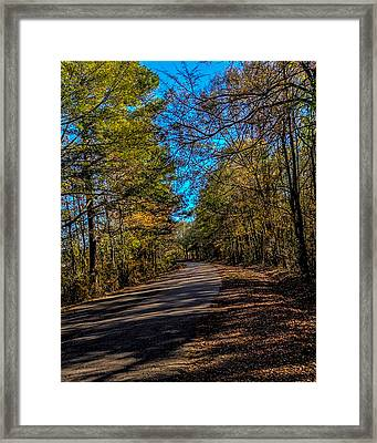 Back Road 5 Framed Print by Thomas Warner