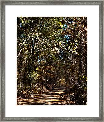 Back Road 6 Framed Print by Thomas Warner