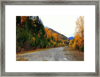 Back Road Color Framed Print