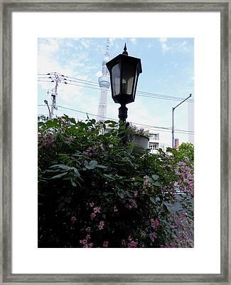 Back Street In Tokyo Framed Print