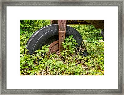Back To Nature Framed Print by Christopher Holmes