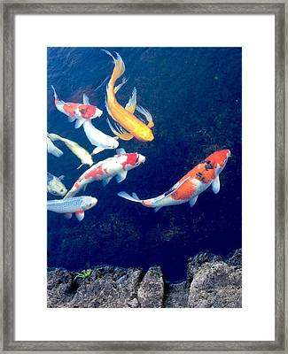 Back To School Framed Print