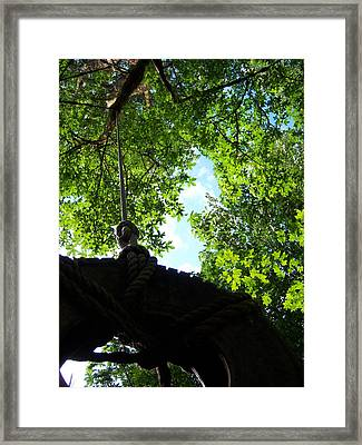 Back Under The Tire Swing Framed Print by Ken Day