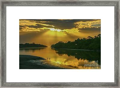 Back Up Reflection Framed Print