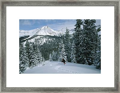 Backcountry Skiing Into An Evergreen Framed Print by Tim Laman