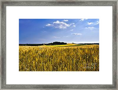 Background Framed Print by Alessandro Giorgi Art Photography