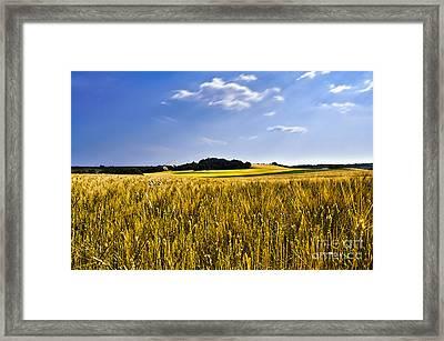 Background Framed Print by Alessandro Giorgi Art Photography