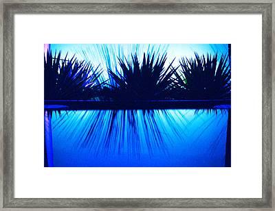 Backlit By Blue Framed Print by Richard Henne