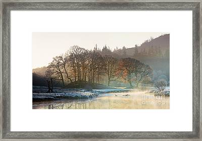 Backlit Trees On The River Brathay Framed Print by Tony Higginson