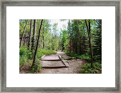 Backpackers Fantasy Framed Print by James BO Insogna