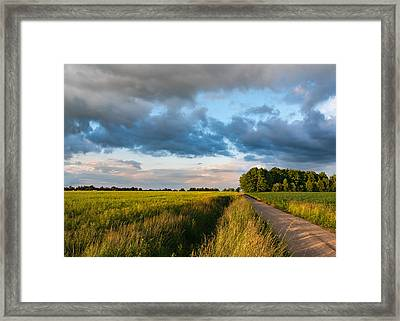 Framed Print featuring the photograph Backroad Between The Fields by Dmytro Korol