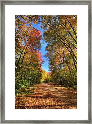 Backroads Of Autumn Framed Print by David Patterson