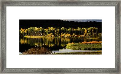 Backwater Blacks At Oxbow Bend Framed Print by TL Mair