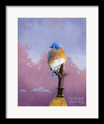 Finial Framed Prints