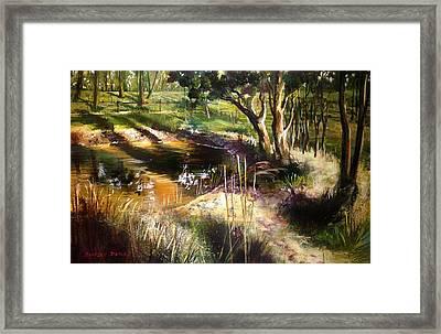Backyard Dam At Mulgoa Framed Print by Shirley  Peters
