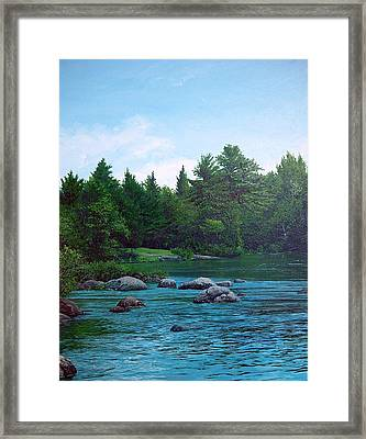 Backyard Framed Print by Richard Ong