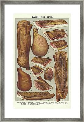Bacon And Ham  Framed Print by English School