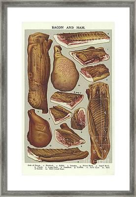 Bacon And Ham  Framed Print