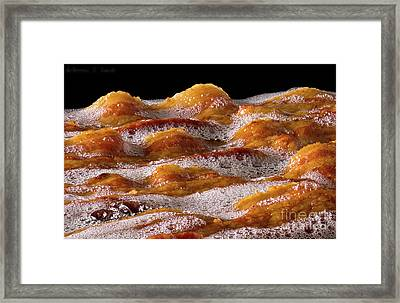 Bacon Framed Print by Warren Sarle