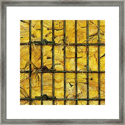 Bad Bad Corn Framed Print