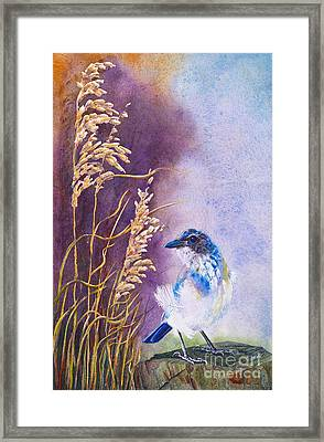 Bad Feather Day Framed Print by Jany Schindler