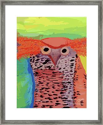 Bad Hair Day Framed Print by Kellie McMahon