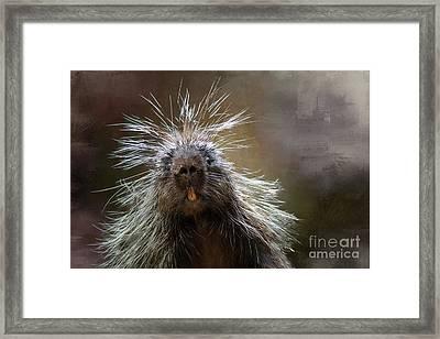 Bad Hairday Framed Print