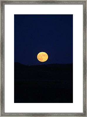 Bad Moon Rising Framed Print by Julie Smith