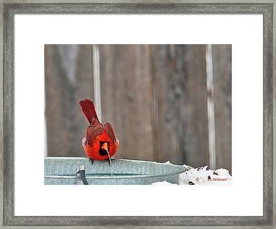 Bad Water Framed Print by Edward Peterson