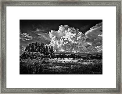 Bad Weather B/w Framed Print by Marvin Spates