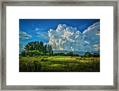Bad Weather Framed Print