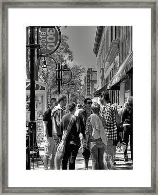 Badgers Framed Print by David Bearden