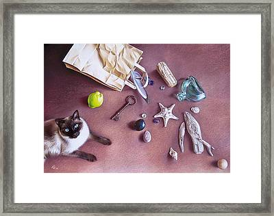 Bag Of Treasures Framed Print by Elena Kolotusha
