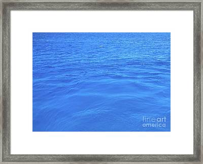 Bahama Blue Framed Print